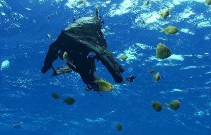 Plastics-Ocean_t750x550