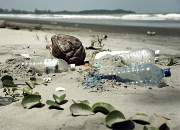 plastic-pollution-beach-ocean-0122.jpg.662x0_q70_crop-scale.jpg